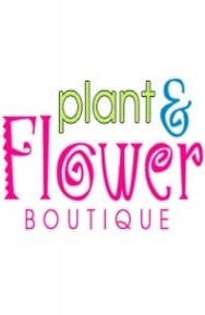PLANT AND FLOWER BOUTIQUE INC