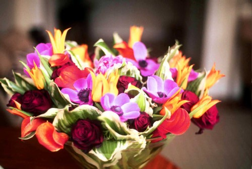 Anniversary flowers auburndale fl the house of flowers