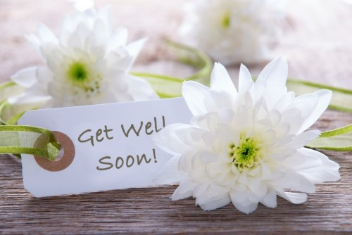 Get well flowers from the house of flowers local auburndale fl flori let the house of flowers of auburndale fl help you send get well wishes to your friend or loved one show them how much you care with a get well gift mightylinksfo
