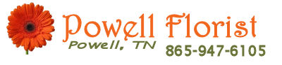 Powell Florist Knoxville