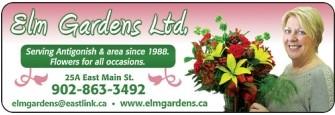 ELM GARDENS 1988 LTD