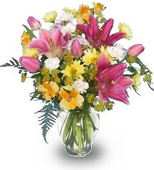 About Us Dinsmore Florist Inc Jacksonville Fl