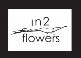 IN 2 FLOWERS DESIGN STUDIO