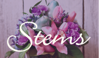 STEMS FLORAL STUDIO