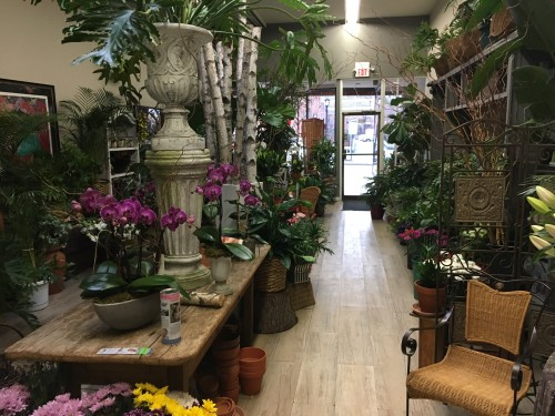 White plains florist white plains ny flower shop carriage house buy now mightylinksfo