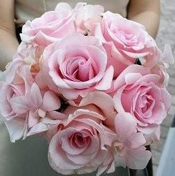 Tulsa Florist The Wild Orchid Wedding Flowers