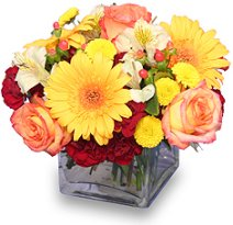 About us a petal for your thoughts spring hill tn when its time to shop for great gifts mightylinksfo