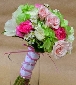 About us suncoast florist sarasota fl browse our assortment of dish gardens green plants blooming plants for a gift that adds life to any room office or outdoor space mightylinksfo